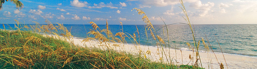 Sarasota Beachfront Homes for Sale