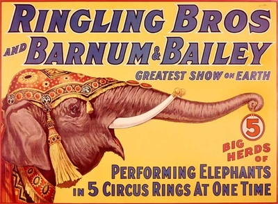 The Ringling Circus in Sarasota