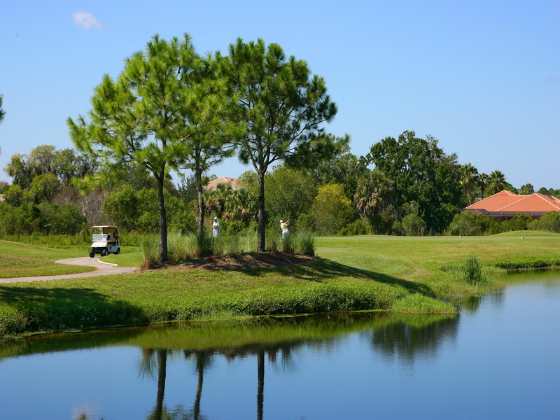Serenoa Golf Course Homes for Sale